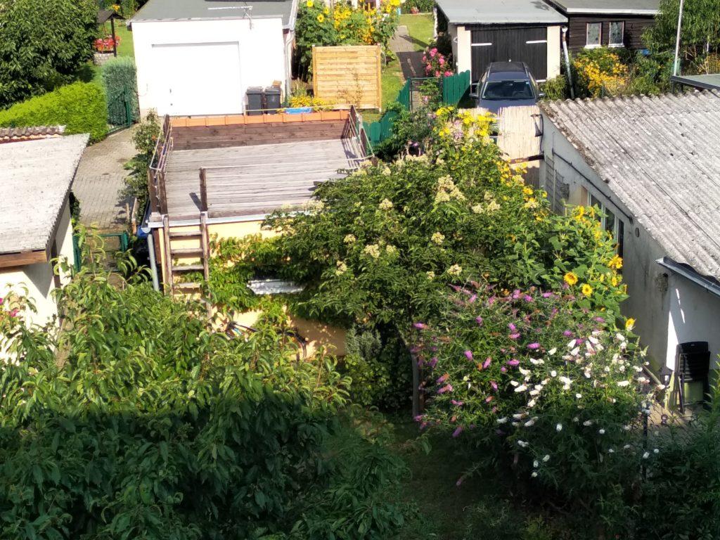 Ein Reihenhaus-Garten mit blühendem Bienenbaum in Hennigsdorf